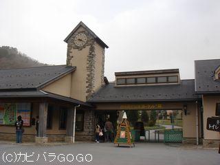 DSC00245.jpg